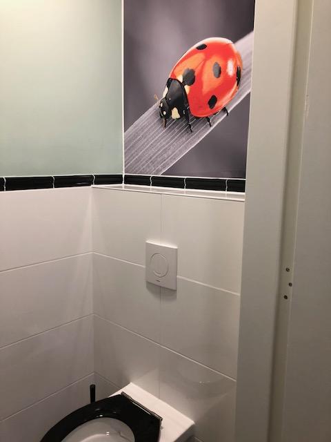 Toletto toiletten Julianaschool Arnhem 7