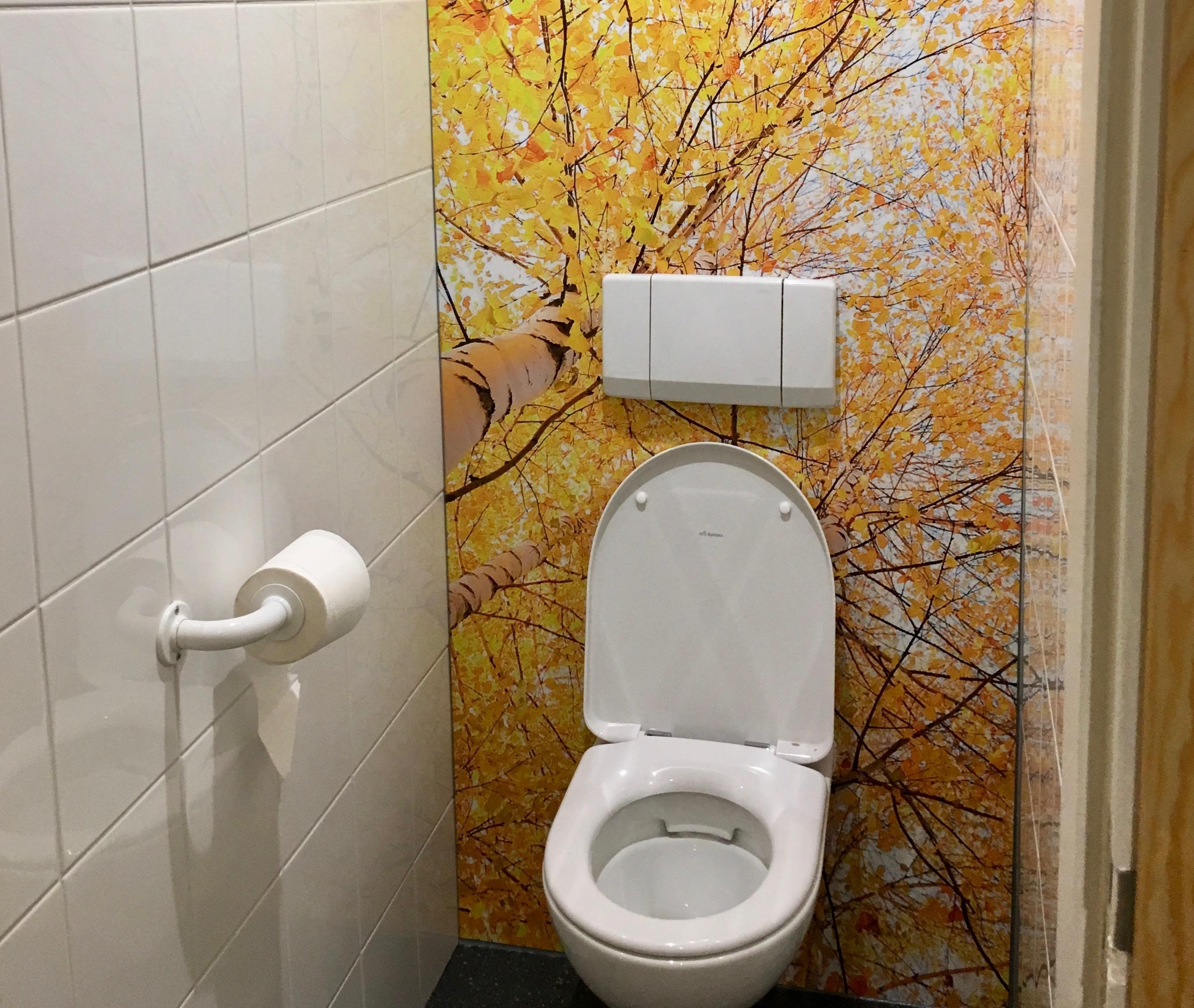 Toletto toiletten Meplax 1jpeg